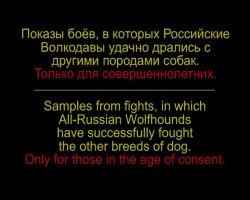 http://forumstatic.ru/files/0002/09/f3/61554.jpg