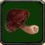Ядовитый гриб