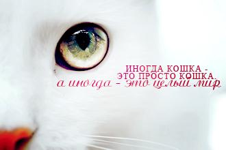 http://forumstatic.ru/files/000f/e4/d7/27645.jpg