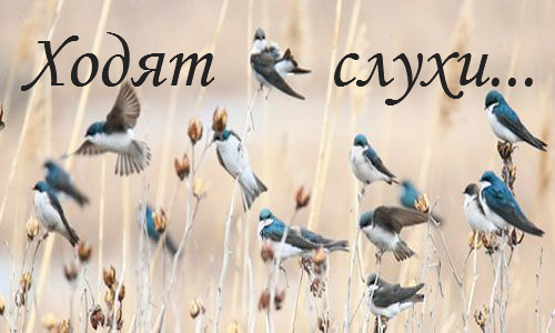http://forumstatic.ru/files/0012/5c/b4/77280.jpg