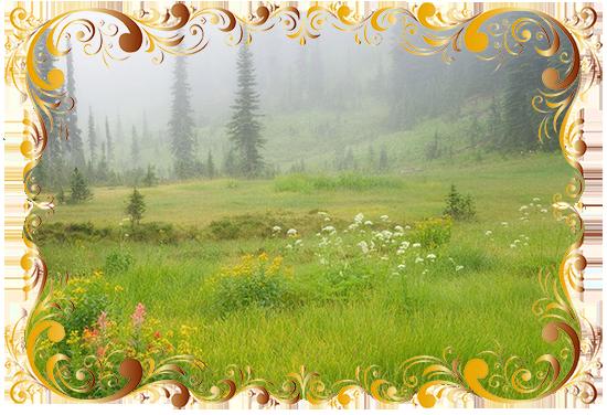 http://forumstatic.ru/files/0014/0d/81/14421.png