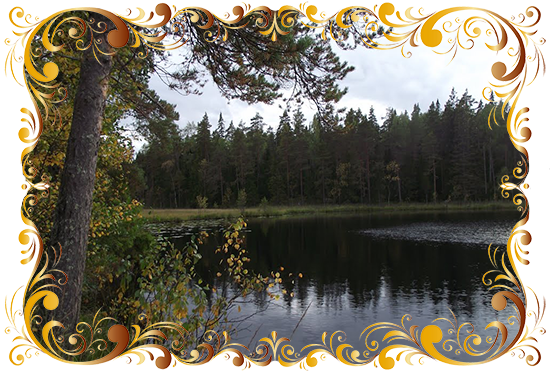http://forumstatic.ru/files/0014/0d/81/89778.png