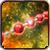 Цепь Венеры|Артефакт для физических ударов, а также магических атак.