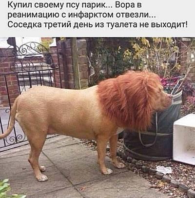 http://forumstatic.ru/files/0019/f6/f9/47127.jpg