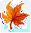 1 место - Осенний Турнир 2008