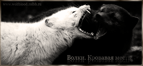 http://forumstatic.ru/files/0012/32/ee/55412.png