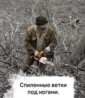 http://forumstatic.ru/files/001a/80/e9/58819.jpg